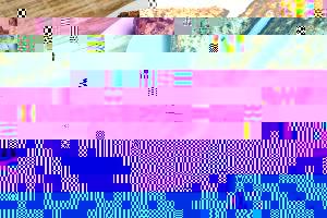 toast-15270