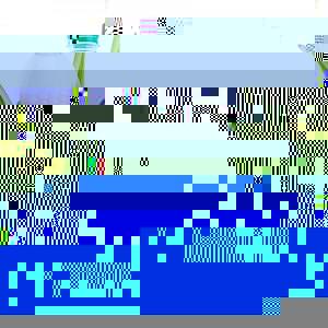 kukorica-palack